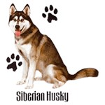 Siberian Husky T-Shirt Styling With Paws