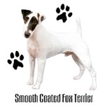 Smooth Fox Terrier T-Shirt Styling With Paws