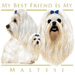 Maltese T-Shirt Best Friend
