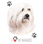 Havanese T-Shirt I Love My