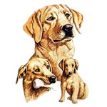 Yellow Lab T-Shirt Best Friends