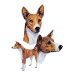 Basenji T-Shirt Best Friends