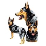 Australian Cattle Dog T-Shirt Best Friends