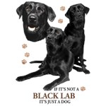 Black Lab T-Shirt Perfectly Portrayed