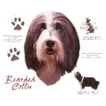 Bearded Collie T-Shirt History Collection