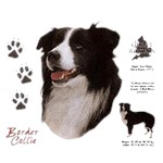Border Collie T-Shirt History Collection