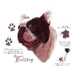 French Bulldog T-Shirt History Collection