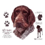 German Wirehaired Pointer T-Shirt History Collection