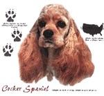 Cocker Spaniel T-Shirt History Collection