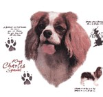 Cavalier King Charles Spaniel T-Shirt History Collection