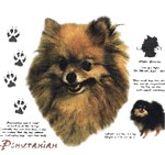 Pomeranian T-Shirt History Collection
