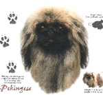Pekingese T-Shirt History Collection
