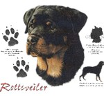 Rottweiler T-Shirt History Collection