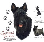 Scottish Terrier T-Shirt History Collection