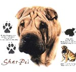 Shar-Pei T-Shirt History Collection