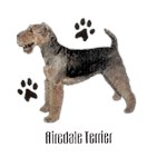 Airedale Terrier T-Shirt Profiles