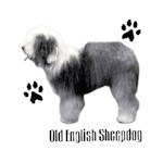 Old English Sheepdog T-Shirt Profiles