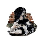 Springer Spaniel T-Shirt Mom with Pup