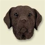 Chocolate Lab Magnet
