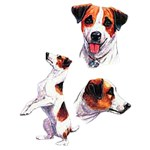 Jack Russell Terrier T-Shirt Collage