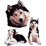 Siberian Husky T-Shirt Collage