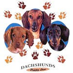 Dachshund T-Shirt Puppies and Paws