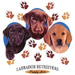 Black Lab T-Shirt Puppies and Paws