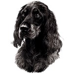 Gordon Setter T-Shirt Eye Catching Detail