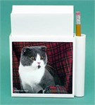 Scottish Fold Cat Hold-a-Note