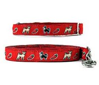 Chihuahua Collar & Leash