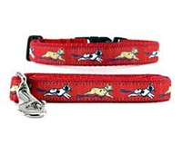 French Bulldog Collar & Leash