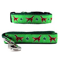10490 Irish Setter Collar &amp; Leash