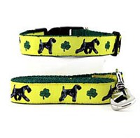 Kerry Blue Terrier Collar & Leash