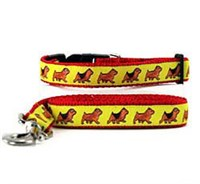Norwich Terrier Collar & Leash