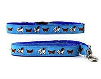 Papillon Collar & Leash