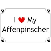 10551 Shirts: Affenpinscher