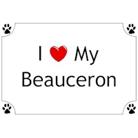 Beauceron Shirts