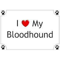 Bloodhound Shirts