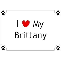 Brittany Shirts