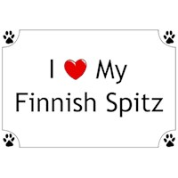 Finnish Spitz Shirts