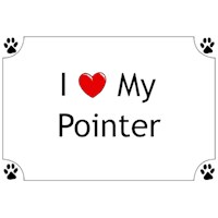 Pointer Shirts