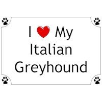 Italian Greyhound Shirts