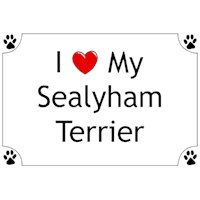 Sealyham Terrier Shirts