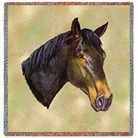 Thoroughbred Horse Blanket