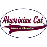 Image of Abyssinian Cat T-Shirt - Breed of Champions