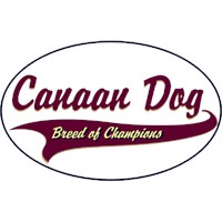 Canaan Dog Shirts