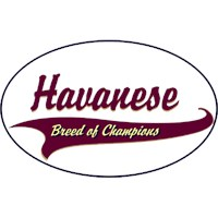 Havanese T-Shirt - Breed of Champions