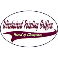 Wirehaired Pointing Griffon Shirts