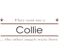 Collie T-Shirt - Other Angels