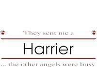 Harrier Shirts